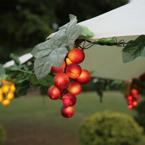 Set of 100 Canopy Grape Lights