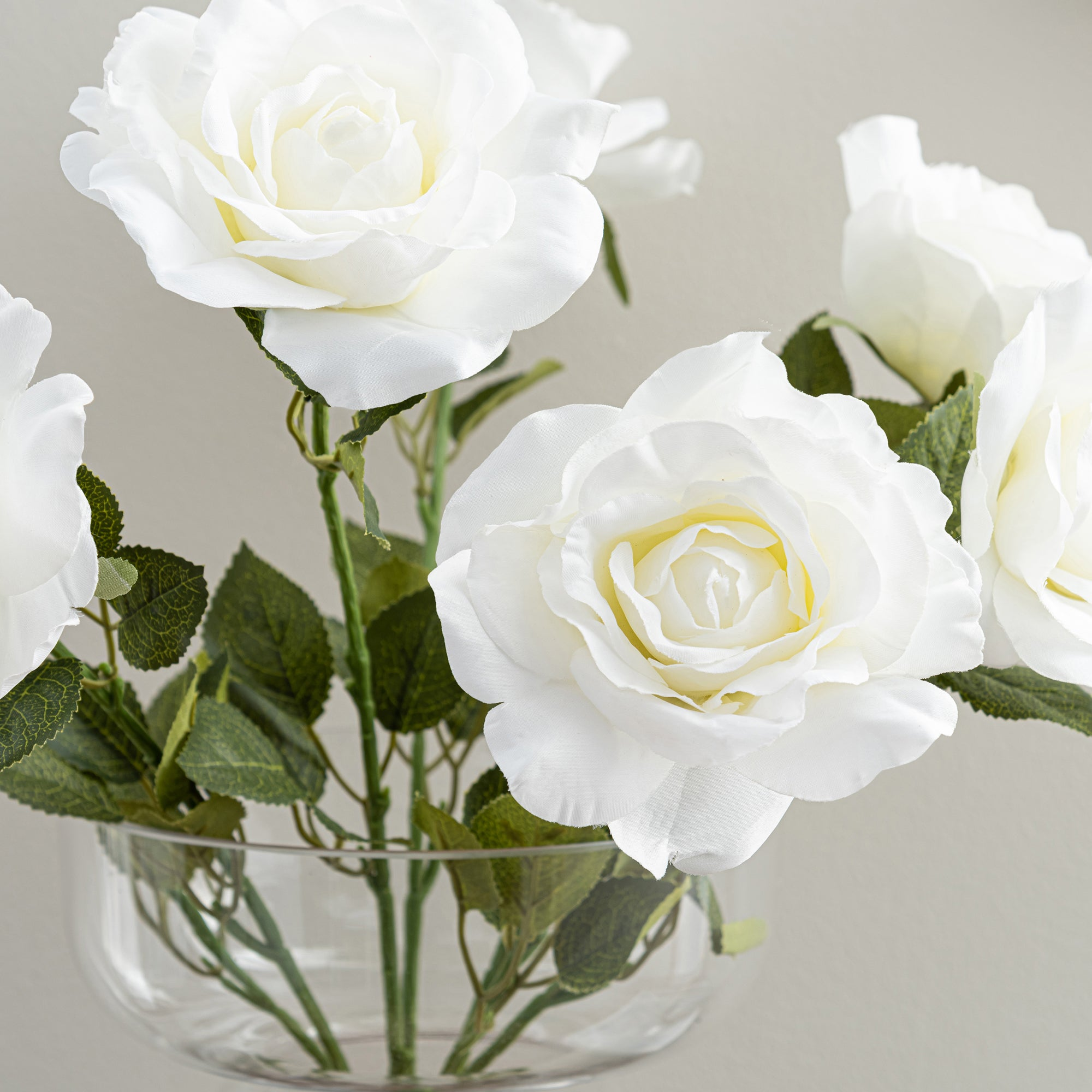 Image of Large Cream Rose Bush Cream (Natural)