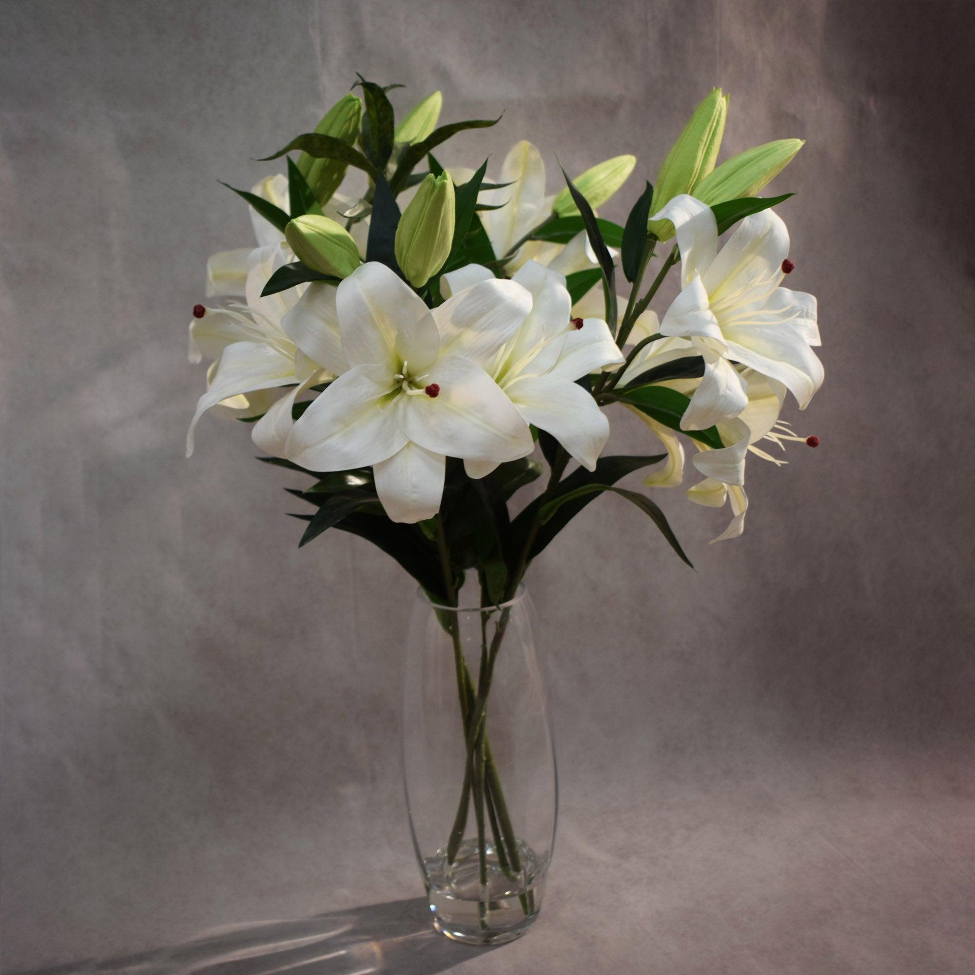 Dorma Stargazer Lilies White