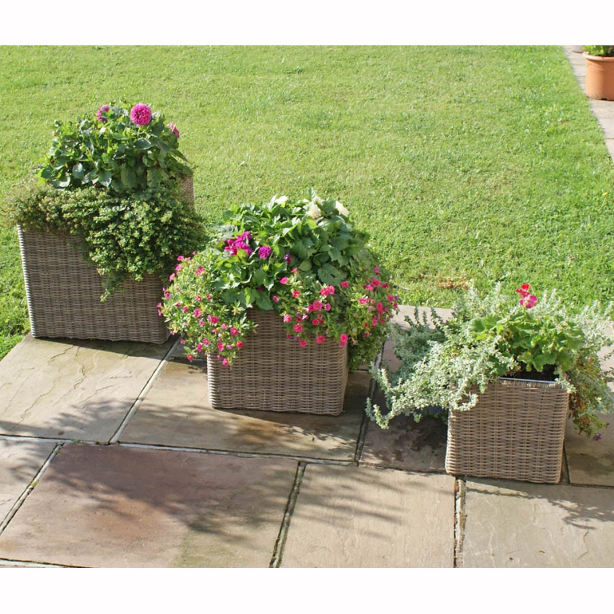 Image of Maze Rattan Winchester Set of 3 Square Planters Brown