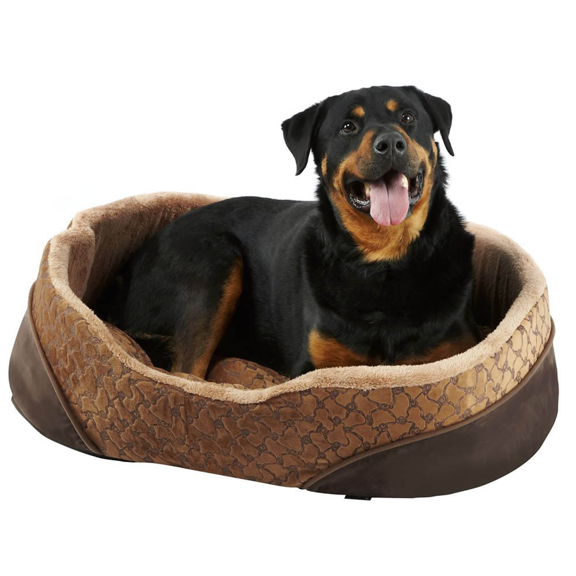 Bunty Brown Mocha Dog Bed Spice (Brown)