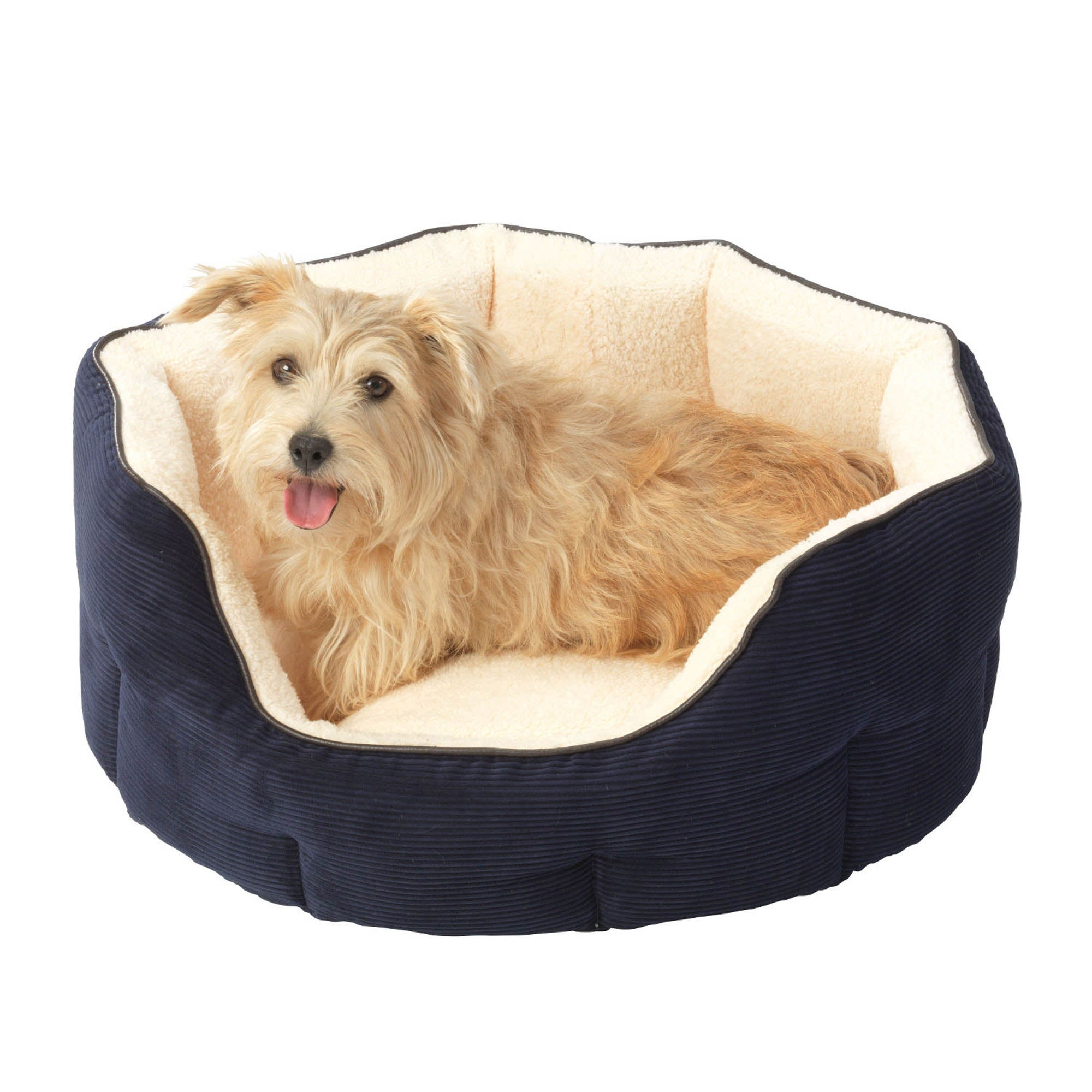 House of Paws Navy Memory Foam Oval Dog Bed Indigo (Blue)