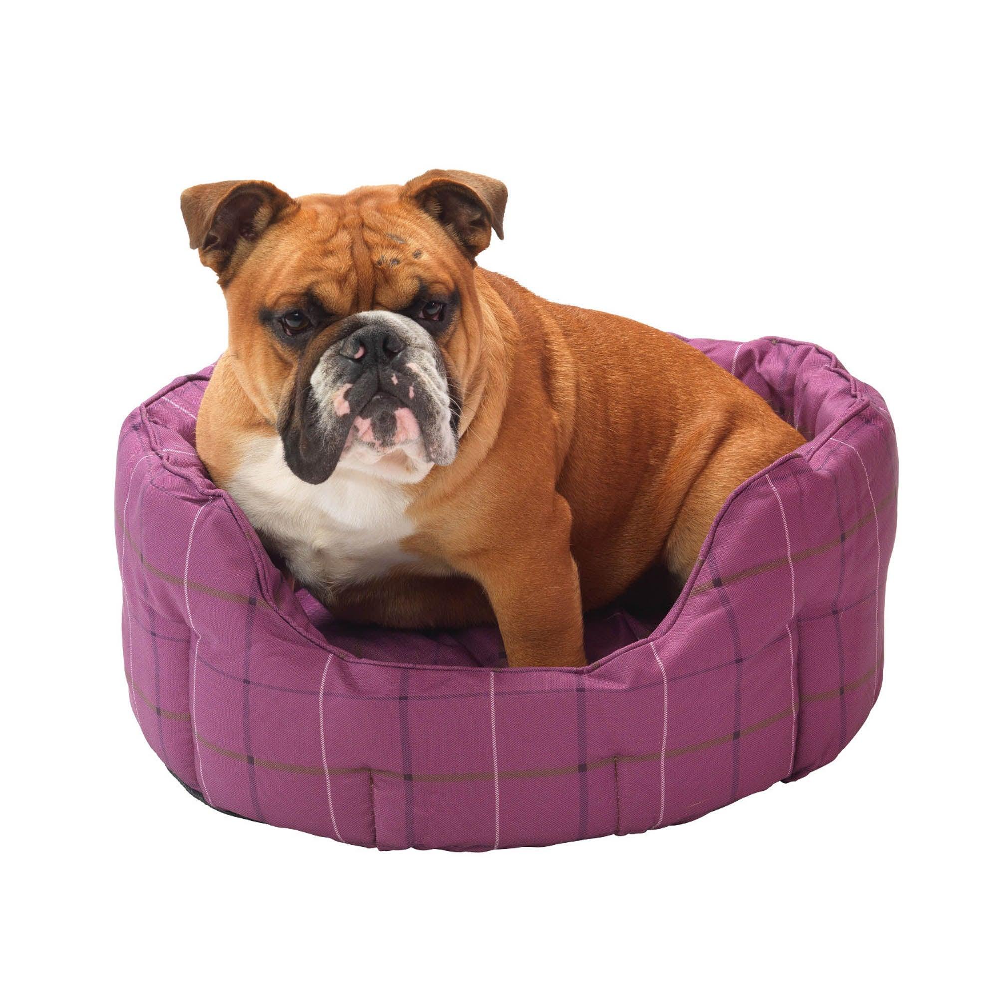 Purple Tweed Oval Dog Bed Raspberry (Purple)