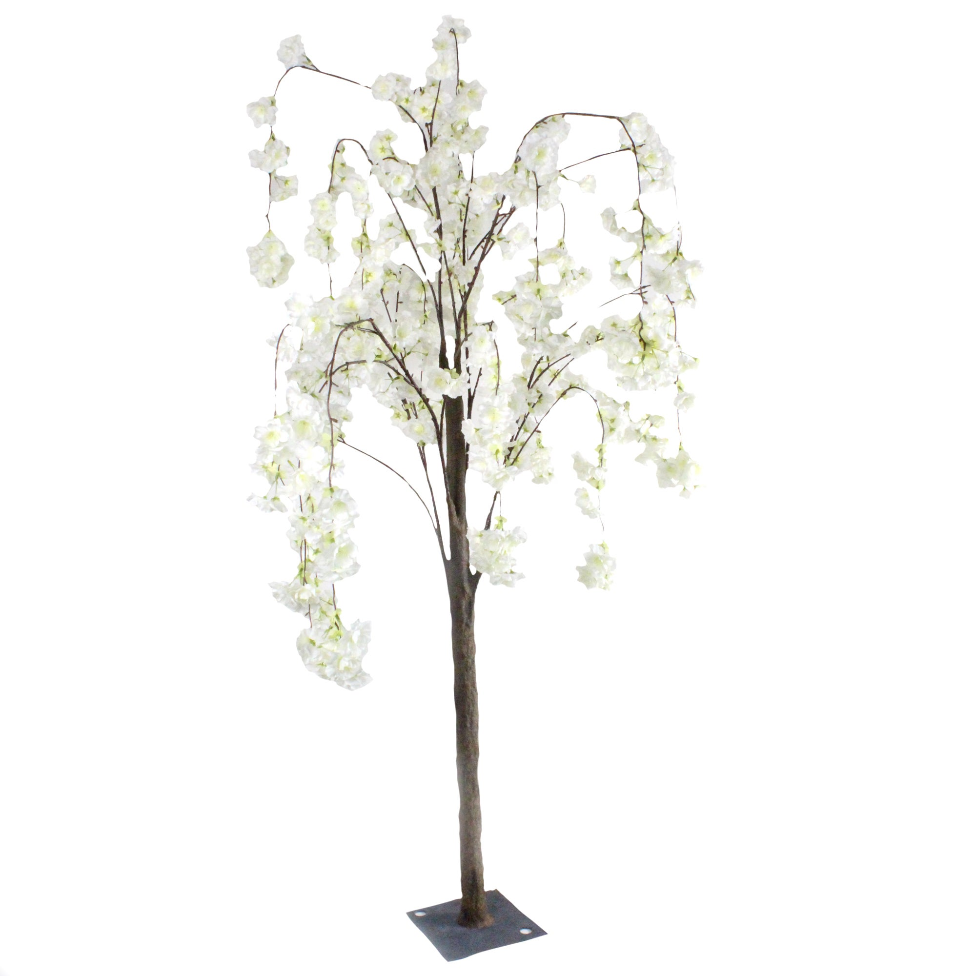 Image of 1.4m Blossom Tree Cream