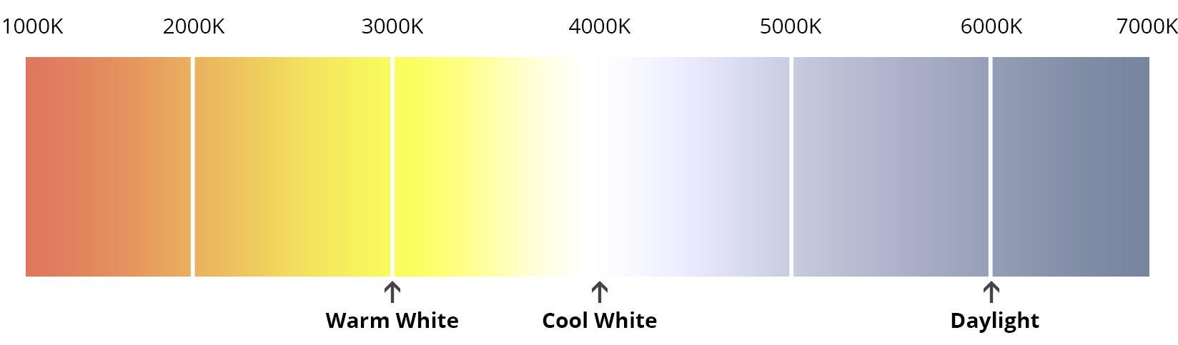 Image segment